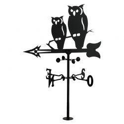 Veleta owls